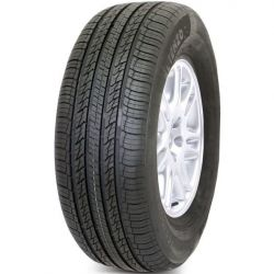 285/35 R22 106 W Altenzo Sports Navigator